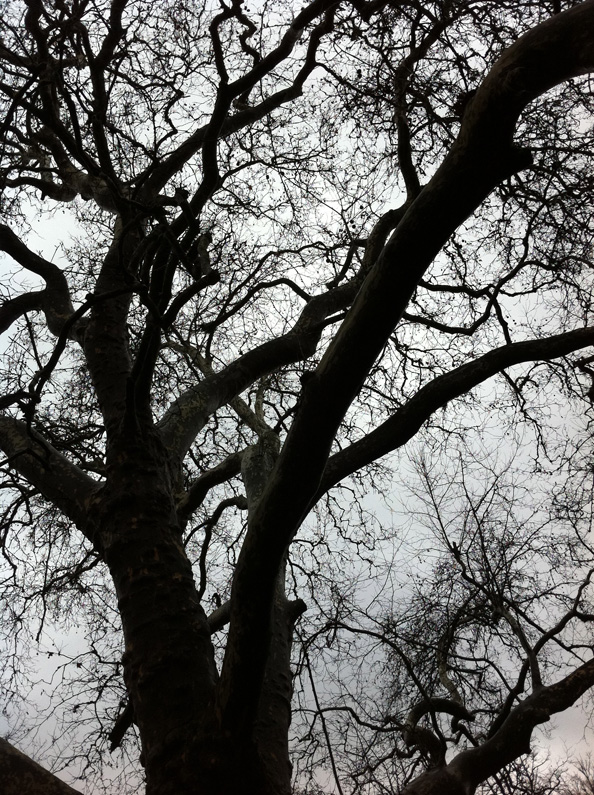 PhotosPerso-IMG_0268